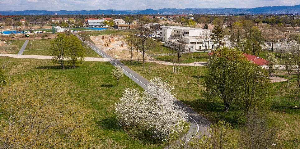 Ansicht der Parkfläche und Wee an der Middle School auf FRANKLIN